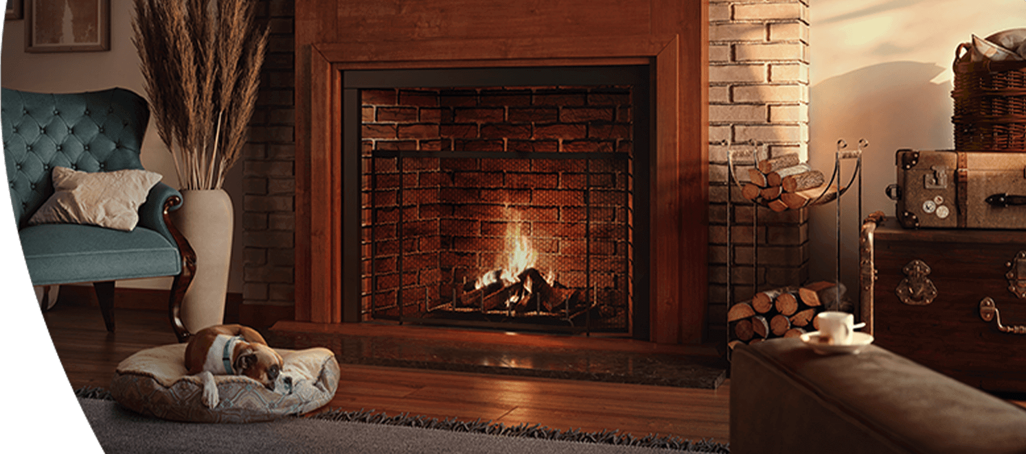 Living room with a dog lying in front of a fire